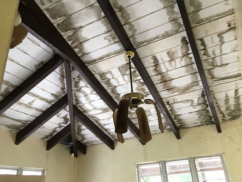 Water damage from storm insurance claim